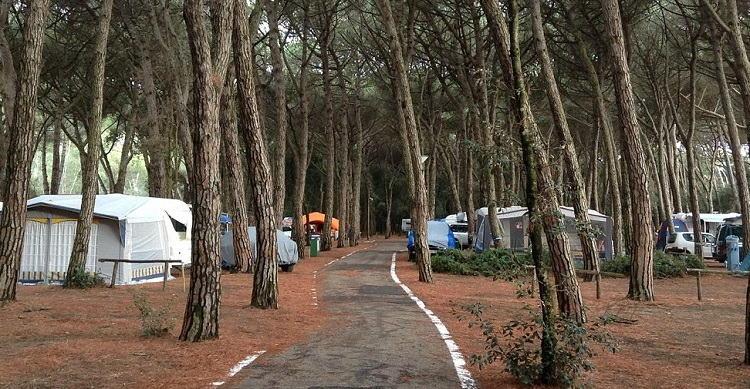 Campinggedeelte beschut onder de bomen, Baia Domizia