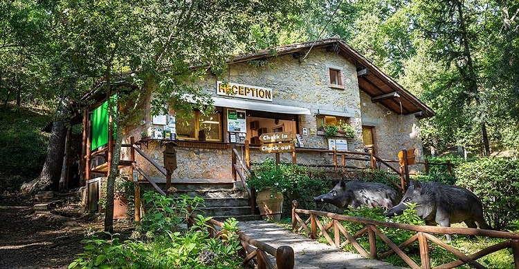 Montescudaio Village receptie